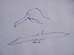 Drawing of seagulls